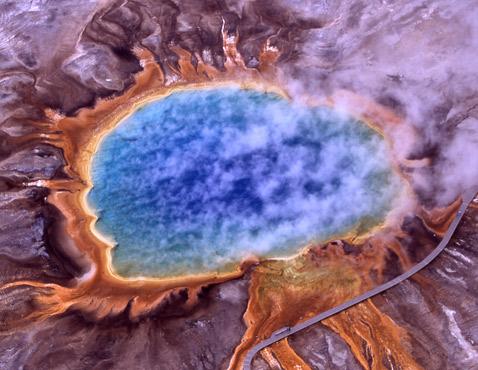 Полярные микробы